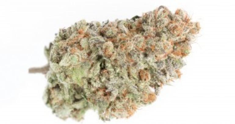 Berry White Pr