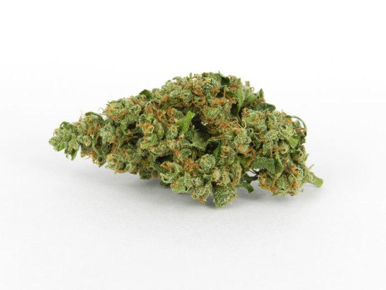 Durban Poison Pr