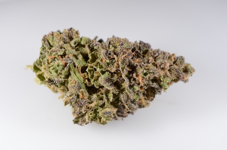 Purple Dream Pr