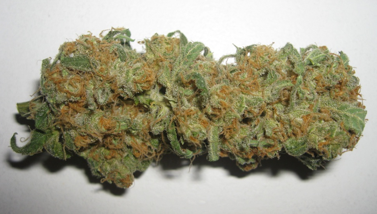 Strawberry Cough (5 For 50) Exclusive