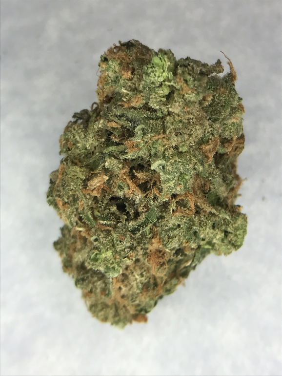 Lemon Skunk (guest) - Tax Included