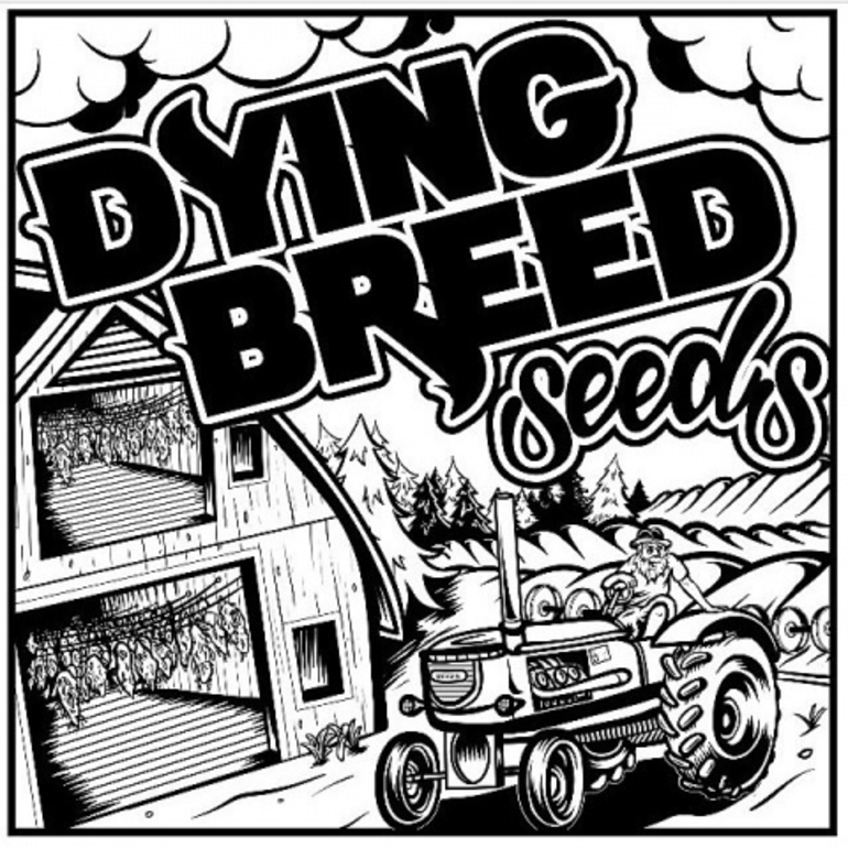 Dying Breed 2 Strains