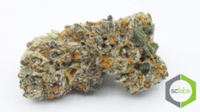 Platinum: Blueberry Kryptonite