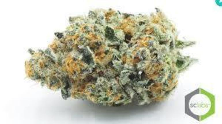 Platinum: King Cookies (king Cookie)