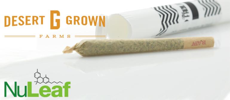 Dgf - Fruitcake (19% Thc)