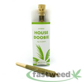 Order Caliva Hybrid House Doobie for $9 each from Caliva - A prerolled item