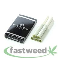 Floracal - Rollins - 3.5g Pack