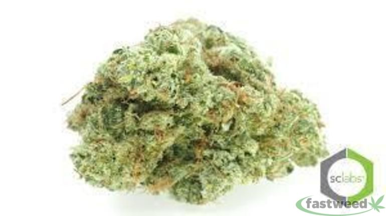Platinum: Pink Champagne (king Cookie)