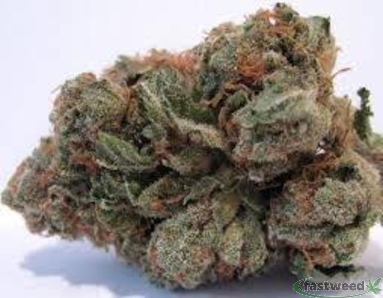 Platinum:purple Panda Cookies