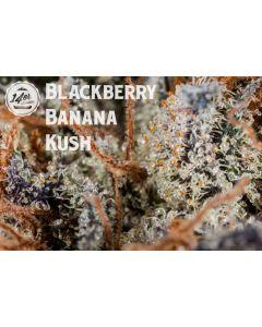 * Blackberry Banana Kush