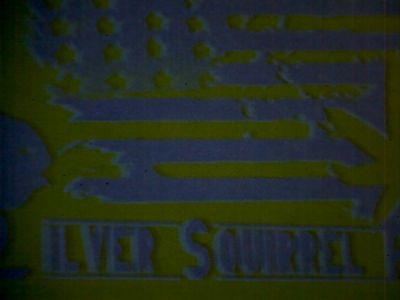 Silver Squirrel Farms Seeds
